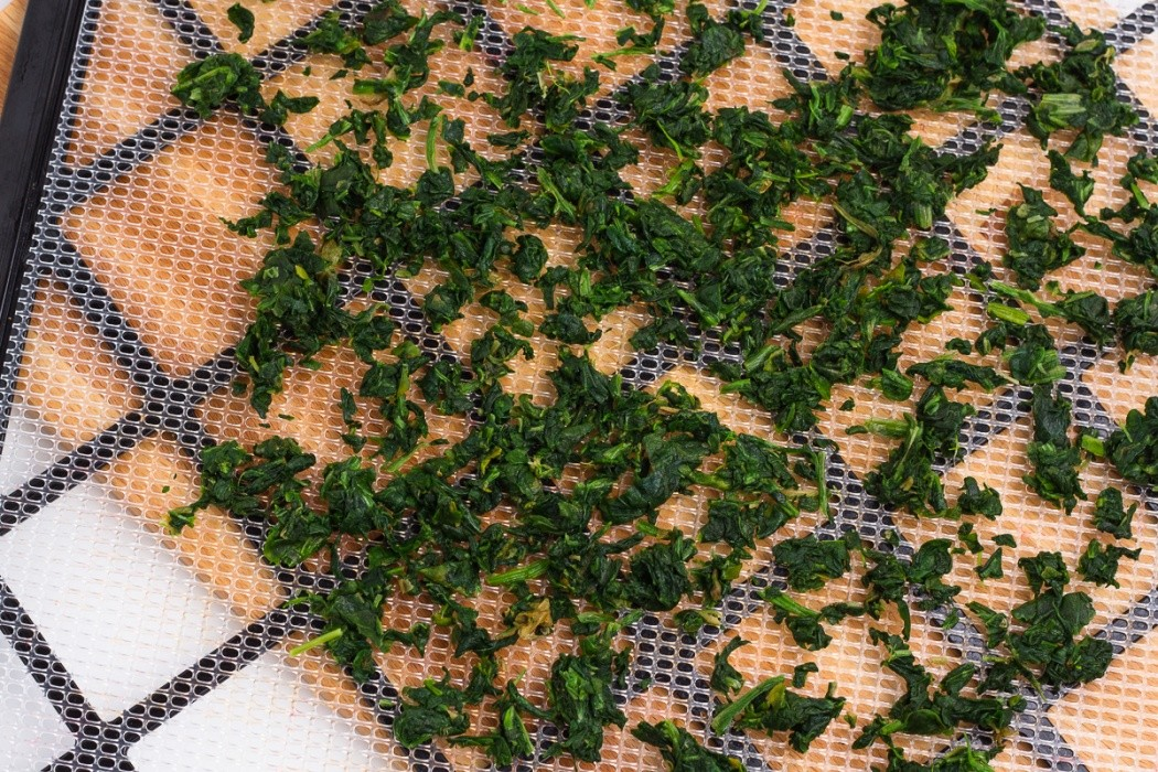 frozen chopped spinach spread on a dehydrator tray