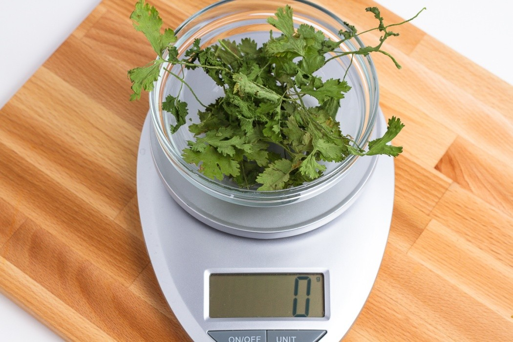 1 gram of dried cilantro
