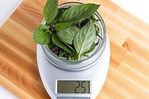 25 grams of thai basil on a scale